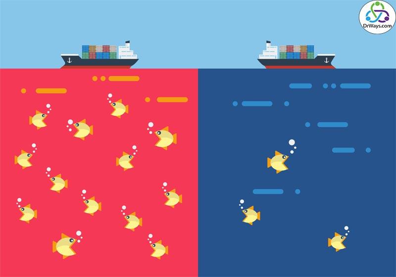 استراتژی اقیانوس آبی در کسب و کار