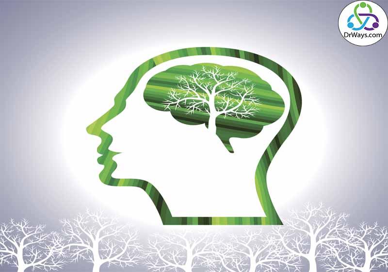مفاهیم قالب در روانشناسی محیط