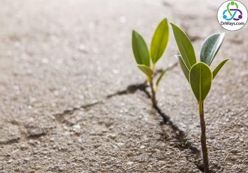 تقویت امید در زندگی